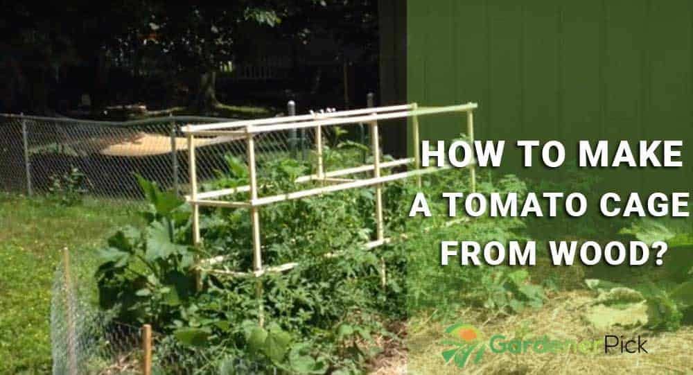 how to make a tomato cage from wood