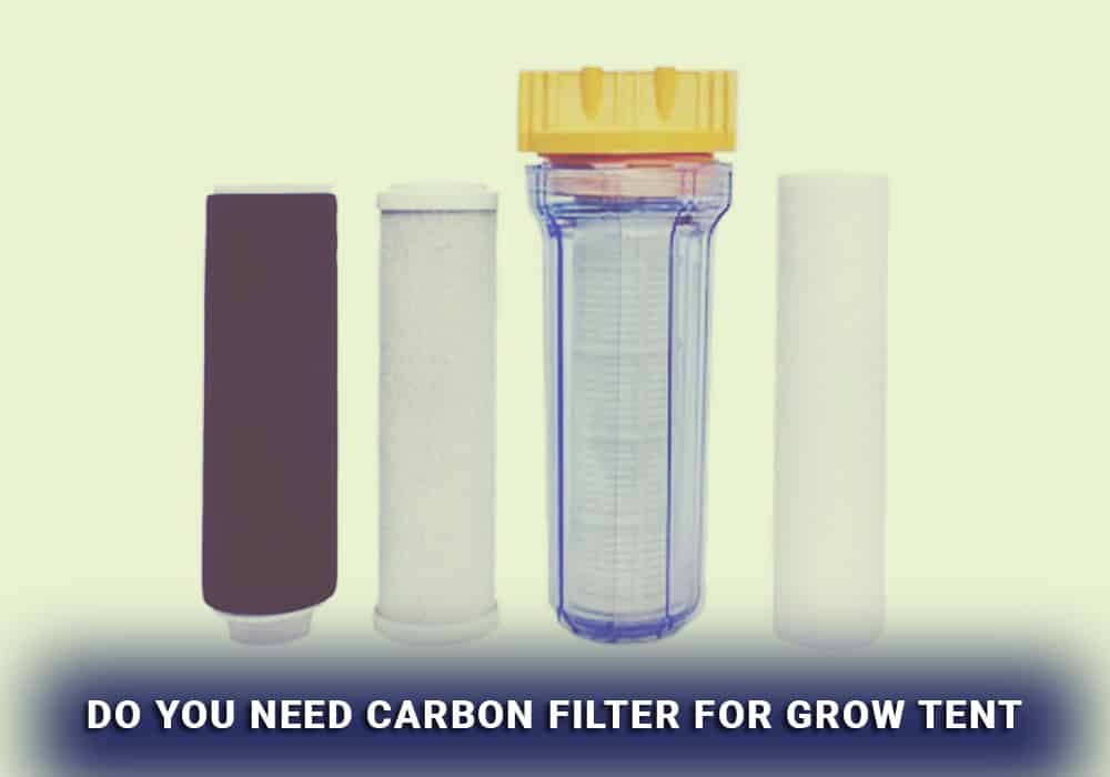 do you need carbon filter for grow tent